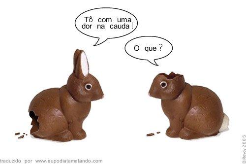Coelhos Comidos coelhos de chocolate