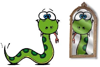 Python no espelho. Python in a mirror.