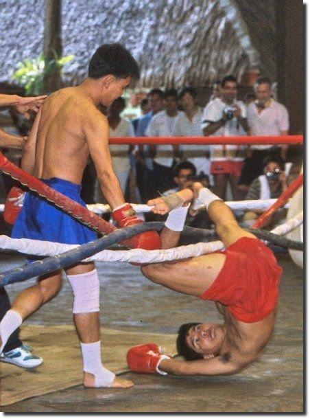 lutador enrolado