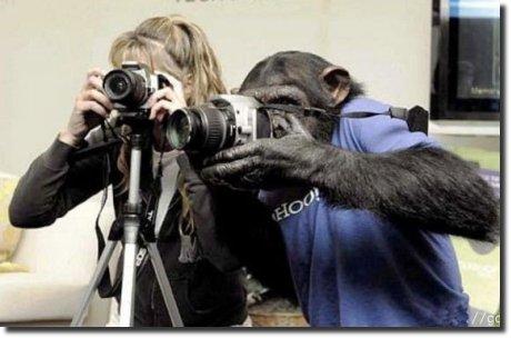 Fotógrafos, um deles blogueiro