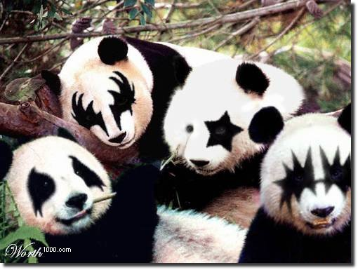Panda Kiss Máquiagem