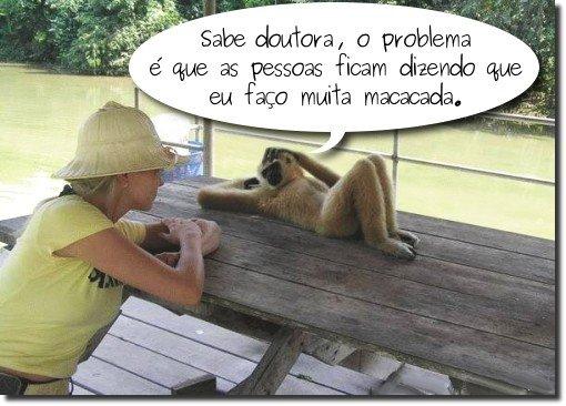 psicólogoca de macacos