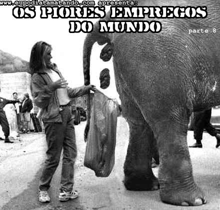 Os piores empregos do mundo, coco de elefante