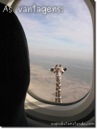 As vantagens de ser uma girafa