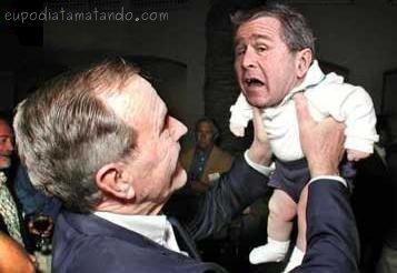 Bush baby